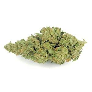 Endo Kush CBD Flower (15% CBD) Quantity:10gram