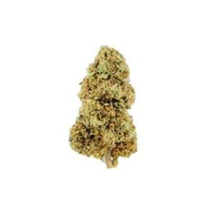 Hamilton (Kompolti) CBD Flowers (12% CBD) Size:10gram